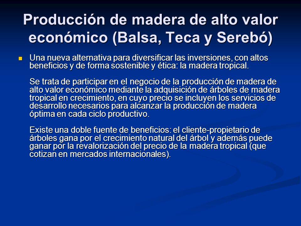 Producción de madera de alto valor económico (Balsa, Teca y Serebó)