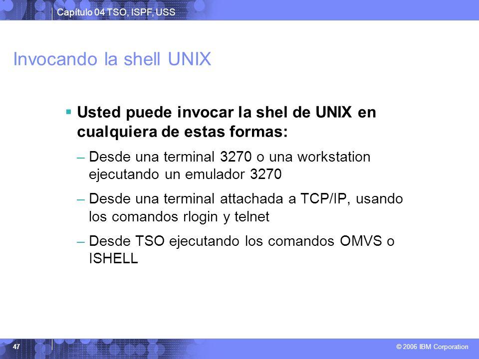 Invocando la shell UNIX