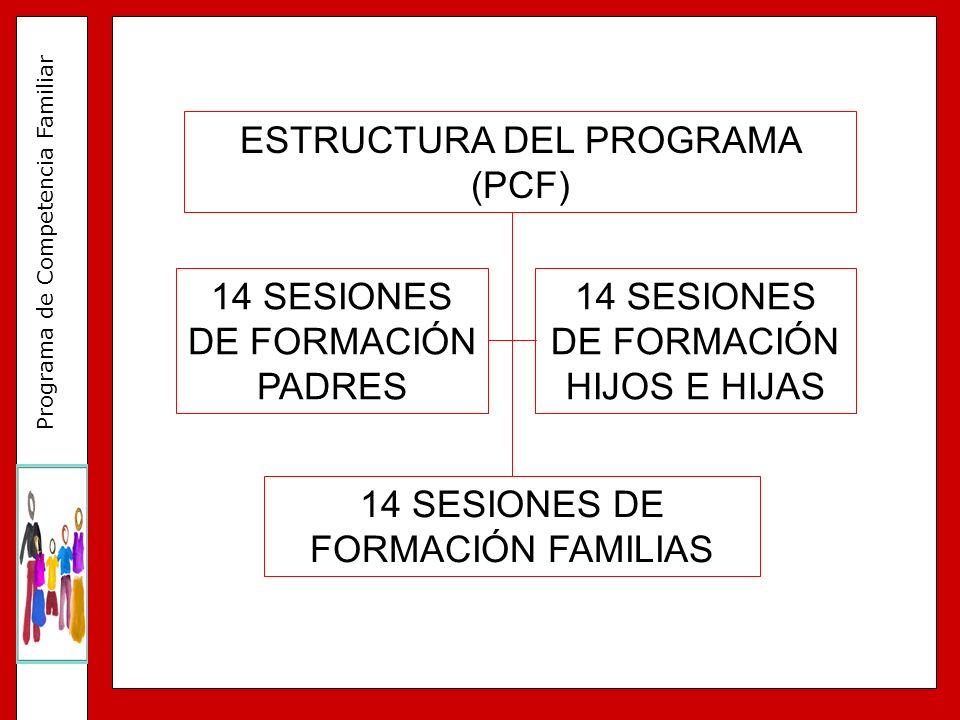 ESTRUCTURA DEL PROGRAMA (PCF)