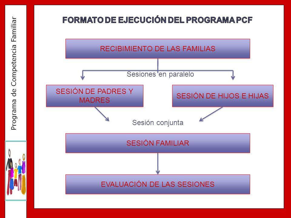 FORMATO DE EJECUCIÓN DEL PROGRAMA PCF