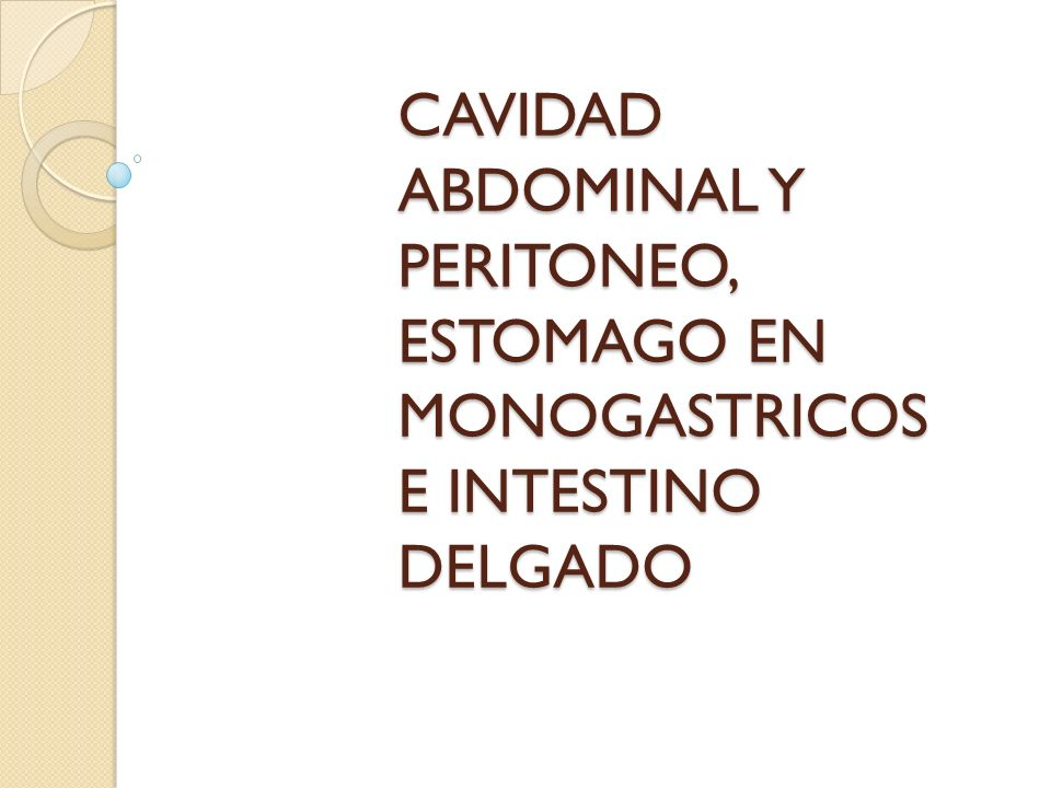 CAVIDAD ABDOMINAL Y PERITONEO, ESTOMAGO EN MONOGASTRICOS E INTESTINO DELGADO