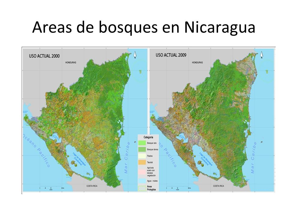 Areas de bosques en Nicaragua