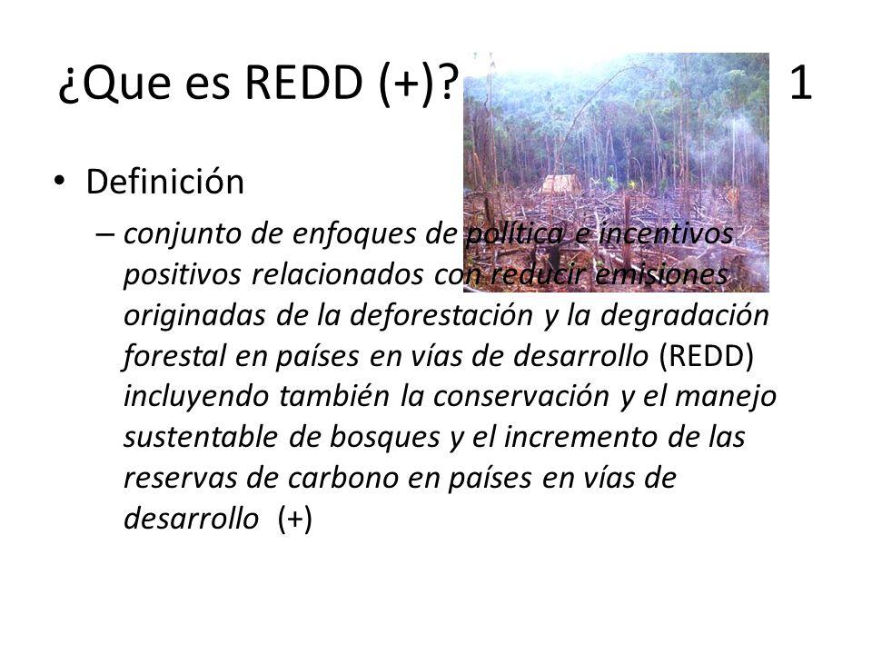 ¿Que es REDD (+) 1 Definición