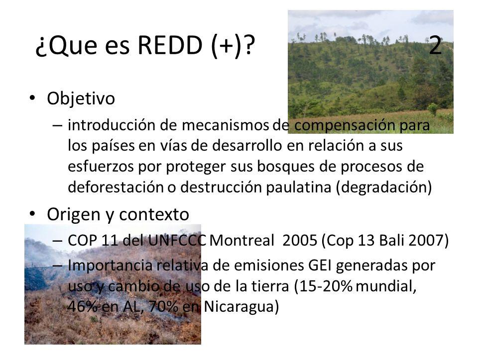 ¿Que es REDD (+) 2 Objetivo Origen y contexto
