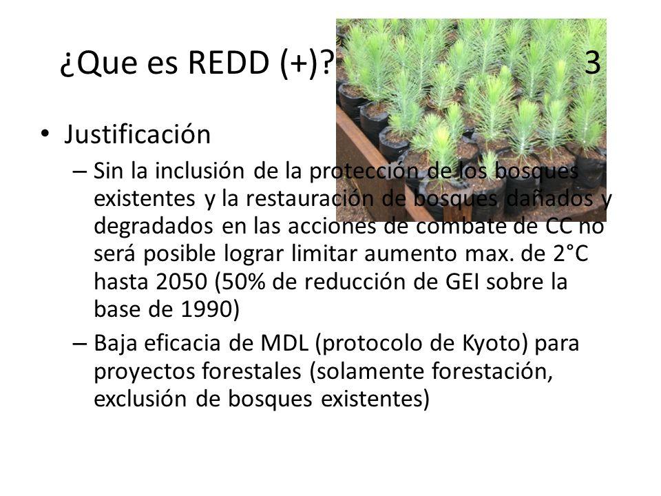 ¿Que es REDD (+) 3 Justificación
