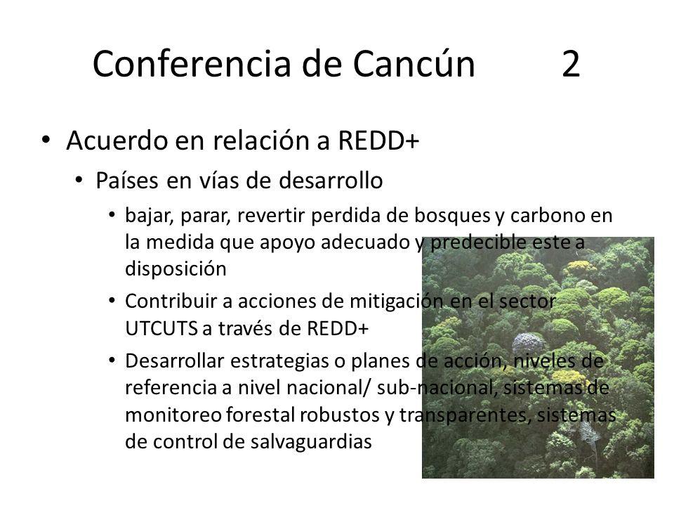 Conferencia de Cancún 2 Acuerdo en relación a REDD+
