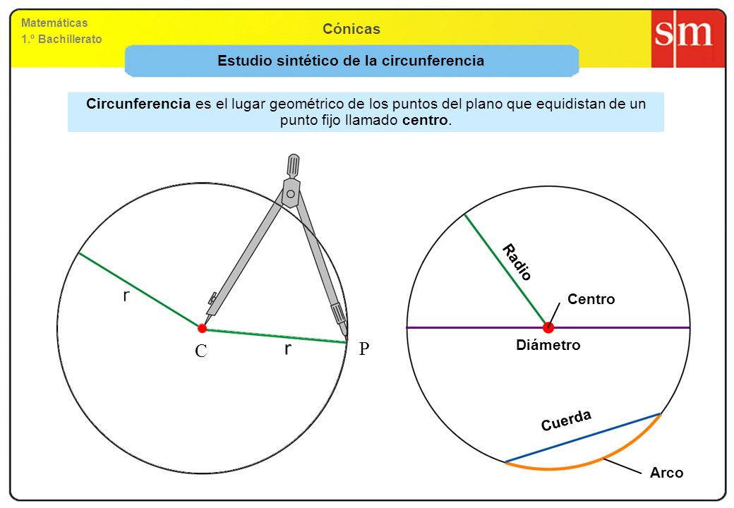 Estudio sintético de la circunferencia