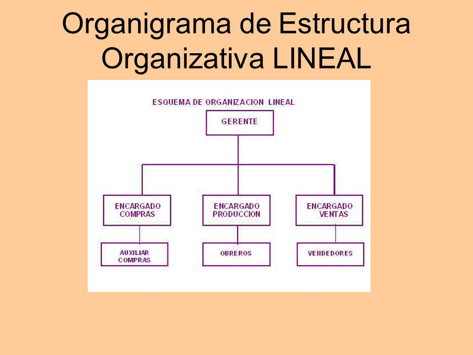 Organigrama de Estructura Organizativa LINEAL