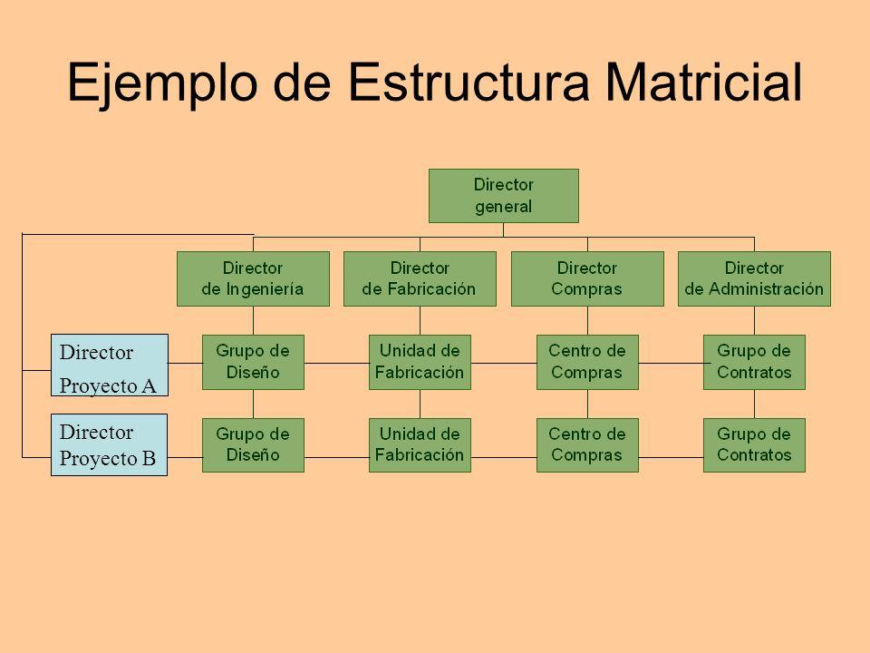 Ejemplo de Estructura Matricial