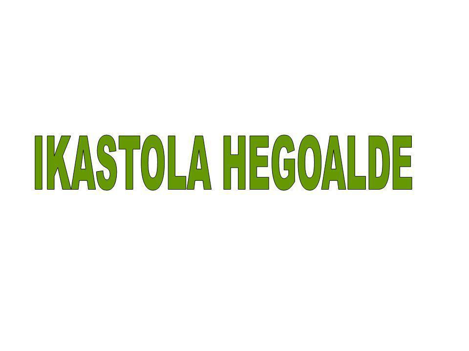 IKASTOLA HEGOALDE