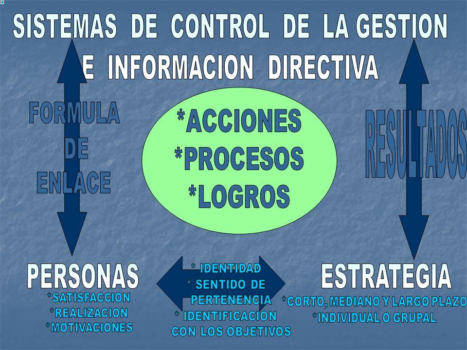 SISTEMAS DE CONTROL DE LA GESTION E INFORMACION DIRECTIVA