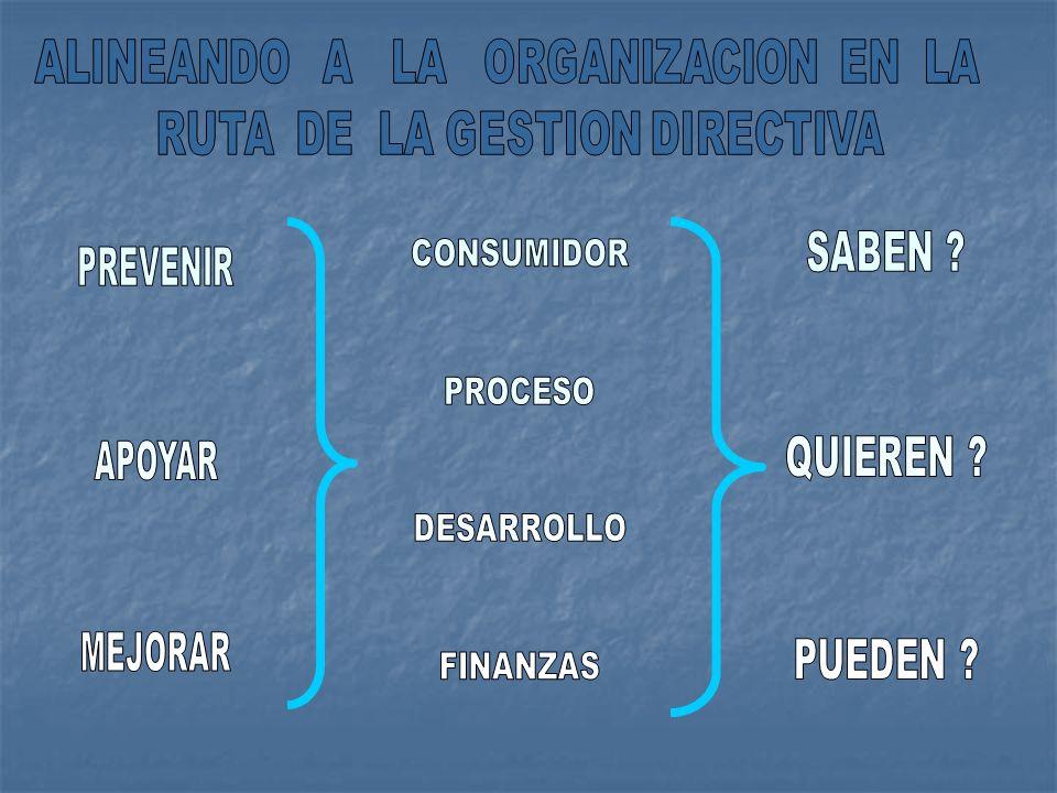 ALINEANDO A LA ORGANIZACION EN LA RUTA DE LA GESTION DIRECTIVA