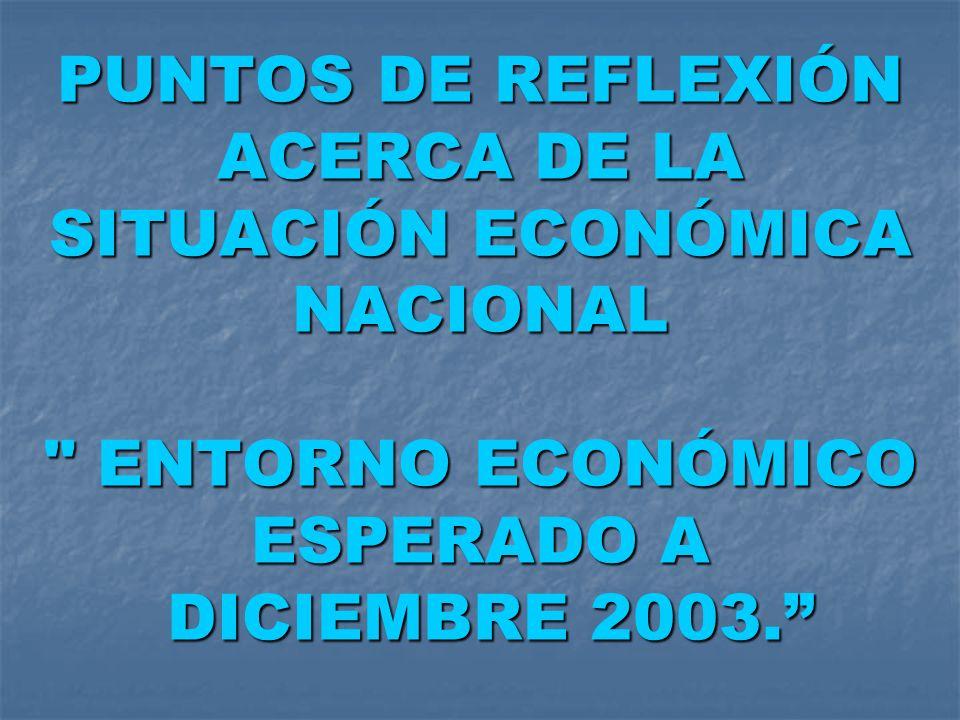 PUNTOS DE REFLEXIÓN ACERCA DE LA SITUACIÓN ECONÓMICA NACIONAL ENTORNO ECONÓMICO ESPERADO A DICIEMBRE 2003.