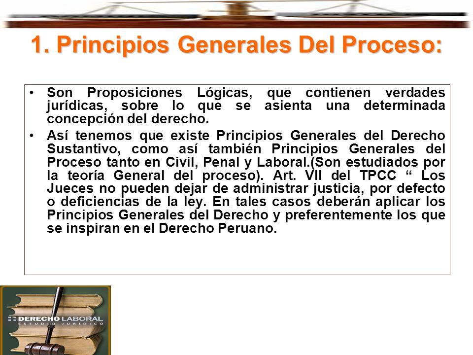 1. Principios Generales Del Proceso: