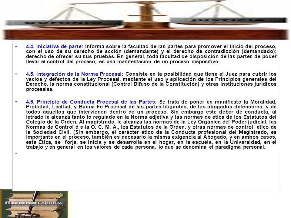 4. Principales Principios Procesales en el Proceso Civil.
