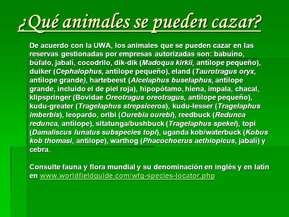 ¿Qué animales se pueden cazar
