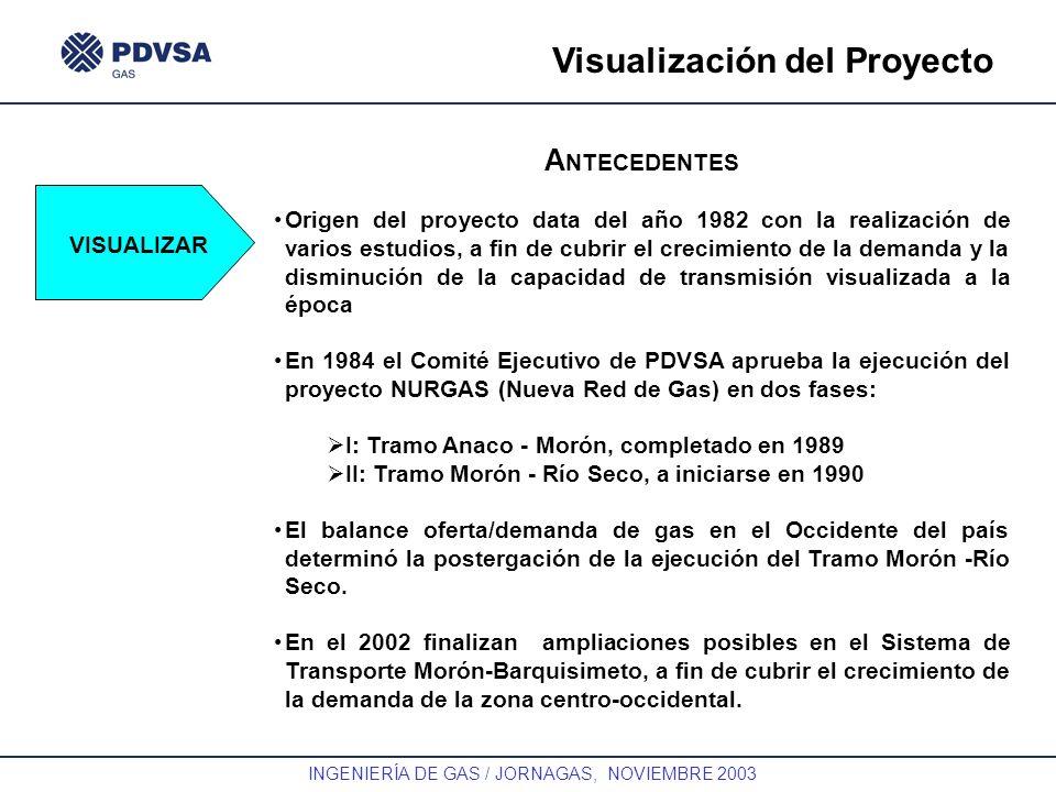 Visualización del Proyecto