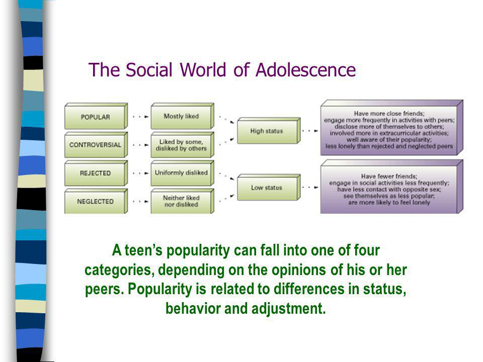 The Social World of Adolescence