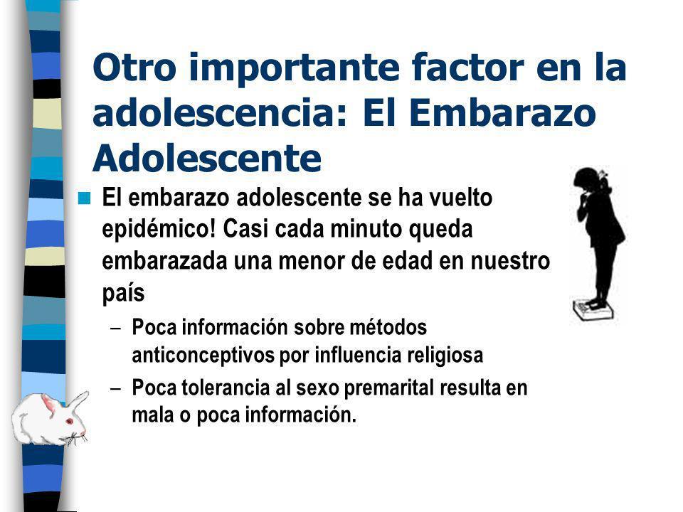 Otro importante factor en la adolescencia: El Embarazo Adolescente
