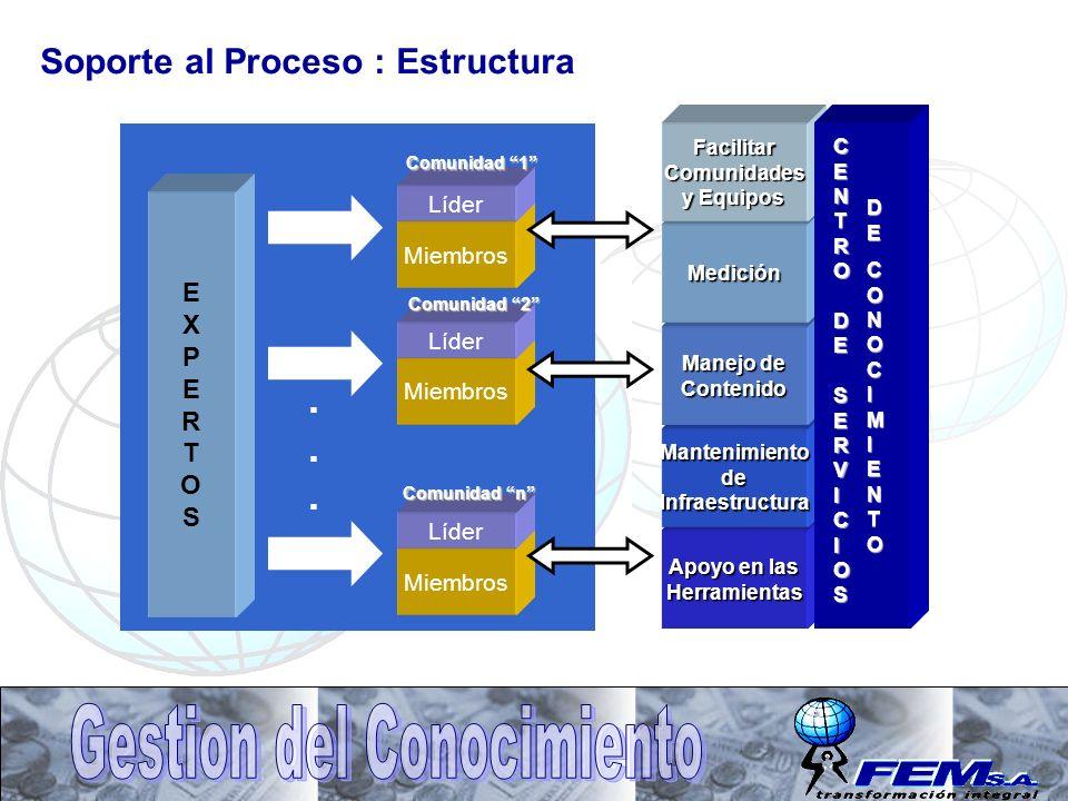 Soporte al Proceso : Estructura