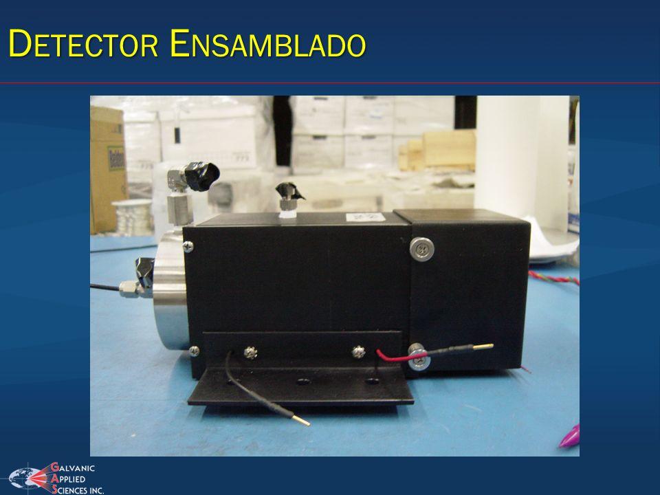 Detector Ensamblado