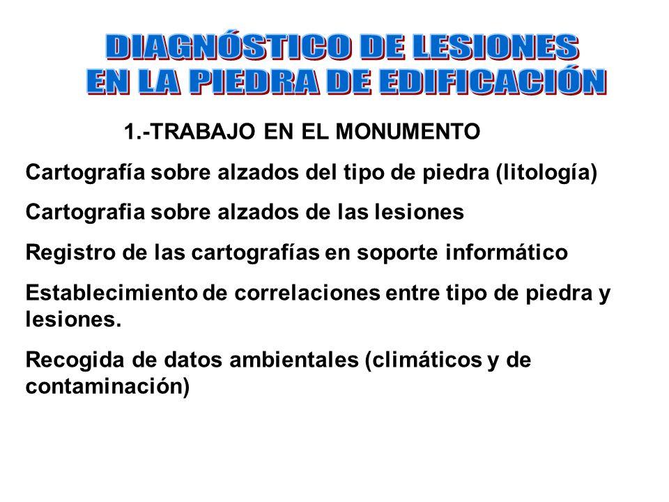 DIAGNÓSTICO DE LESIONES EN LA PIEDRA DE EDIFICACIÓN