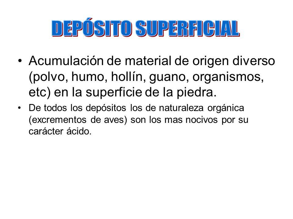 DEPÓSITO SUPERFICIAL Acumulación de material de origen diverso (polvo, humo, hollín, guano, organismos, etc) en la superficie de la piedra.