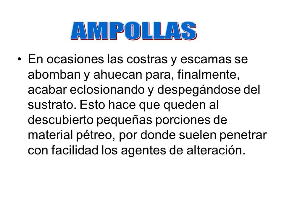 AMPOLLAS