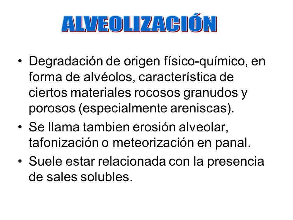 ALVEOLIZACIÓN