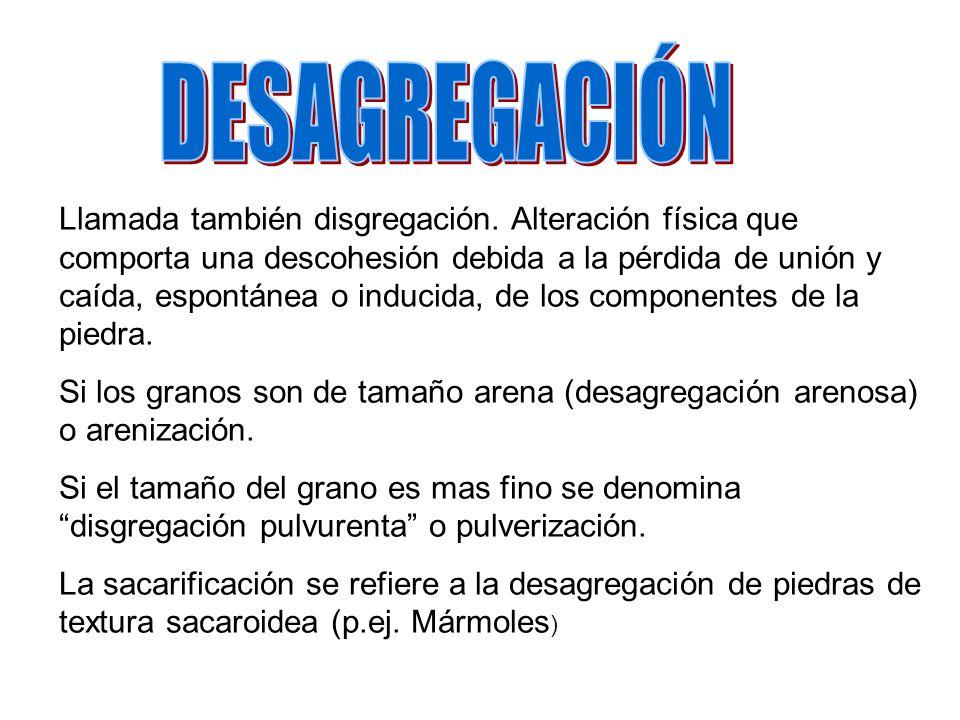 DESAGREGACIÓN