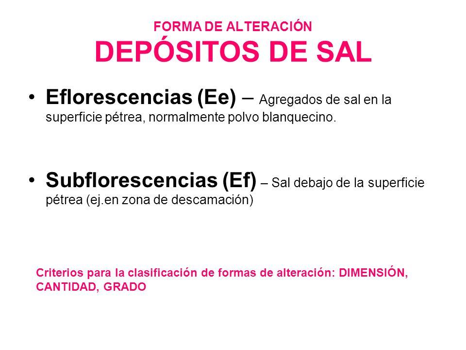 FORMA DE ALTERACIÓN DEPÓSITOS DE SAL