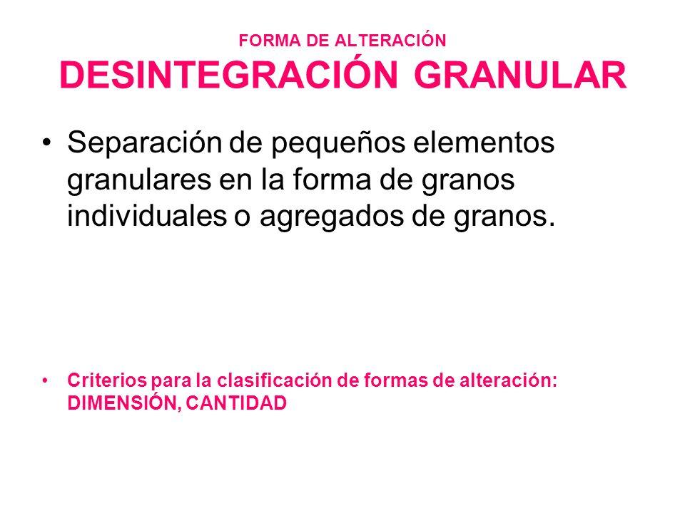 FORMA DE ALTERACIÓN DESINTEGRACIÓN GRANULAR