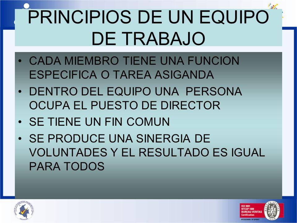 PRINCIPIOS DE UN EQUIPO DE TRABAJO