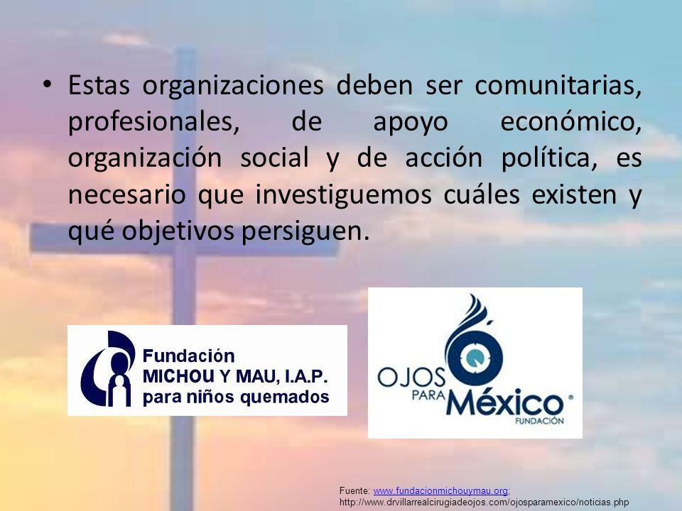 Estas organizaciones deben ser comunitarias, profesionales, de apoyo económico, organización social y de acción política, es necesario que investiguemos cuáles existen y qué objetivos persiguen.