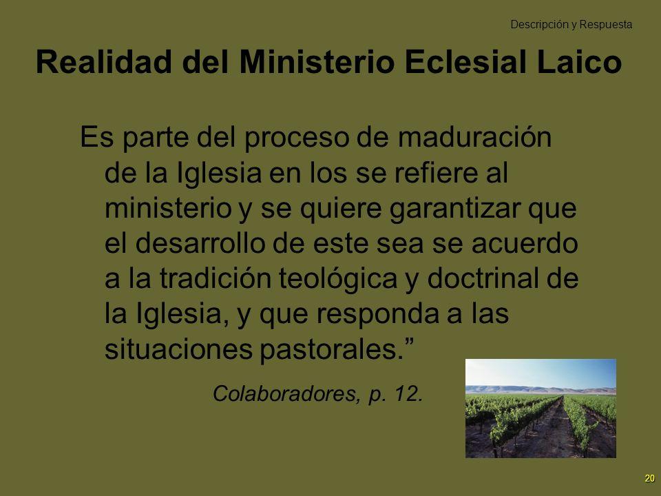 Realidad del Ministerio Eclesial Laico