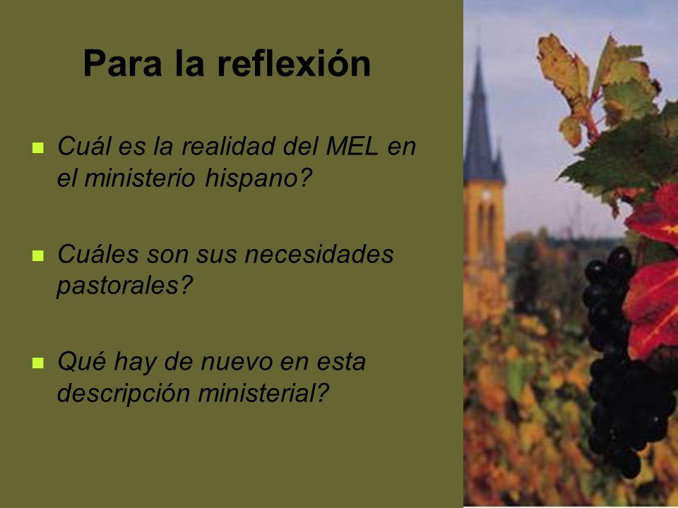 Para la reflexión Cuál es la realidad del MEL en el ministerio hispano Cuáles son sus necesidades pastorales