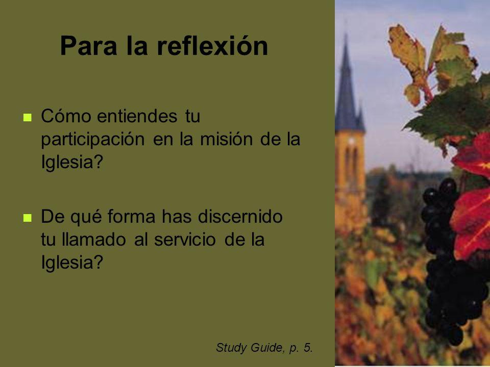 Para la reflexión Cómo entiendes tu participación en la misión de la Iglesia De qué forma has discernido tu llamado al servicio de la Iglesia