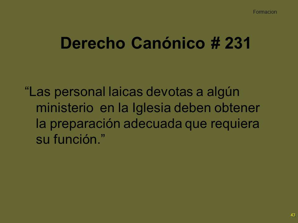 Formacion Derecho Canónico # 231.
