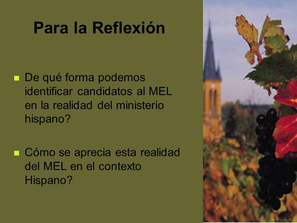 Para la Reflexión De qué forma podemos identificar candidatos al MEL en la realidad del ministerio hispano