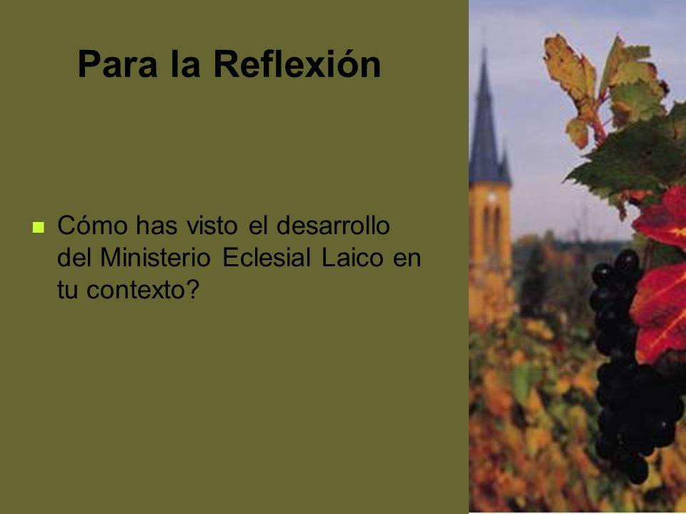 Para la Reflexión Cómo has visto el desarrollo del Ministerio Eclesial Laico en tu contexto