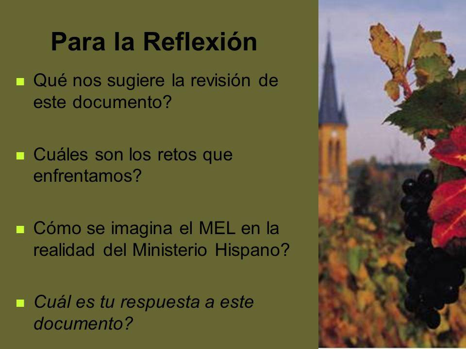 Para la Reflexión Qué nos sugiere la revisión de este documento