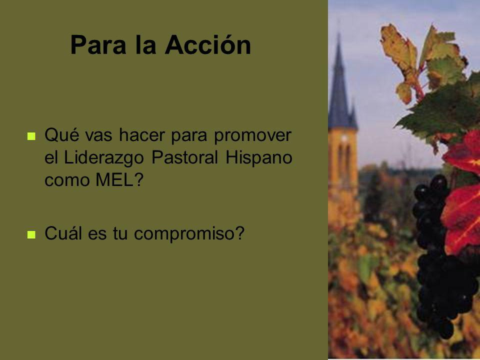 Para la Acción Qué vas hacer para promover el Liderazgo Pastoral Hispano como MEL.