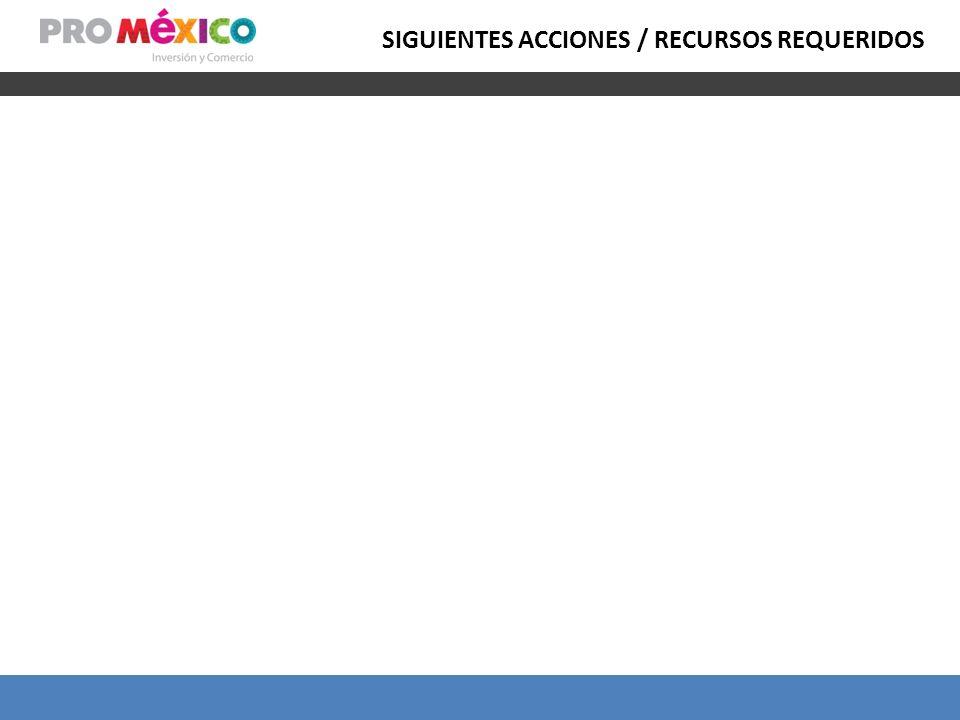 SIGUIENTES ACCIONES / RECURSOS REQUERIDOS