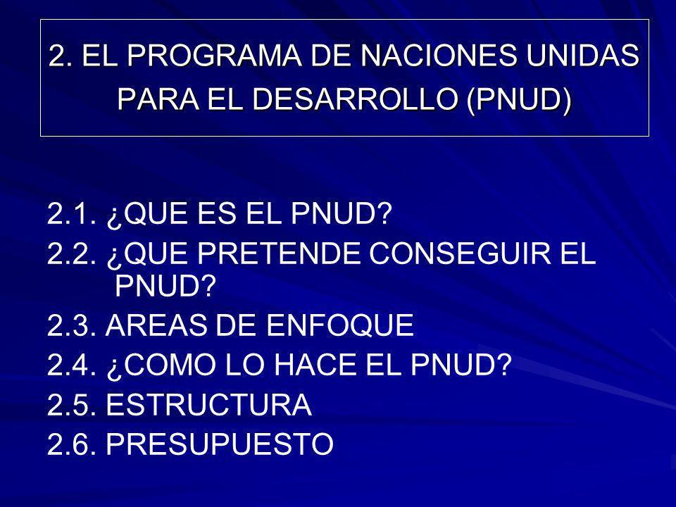 2. EL PROGRAMA DE NACIONES UNIDAS PARA EL DESARROLLO (PNUD)