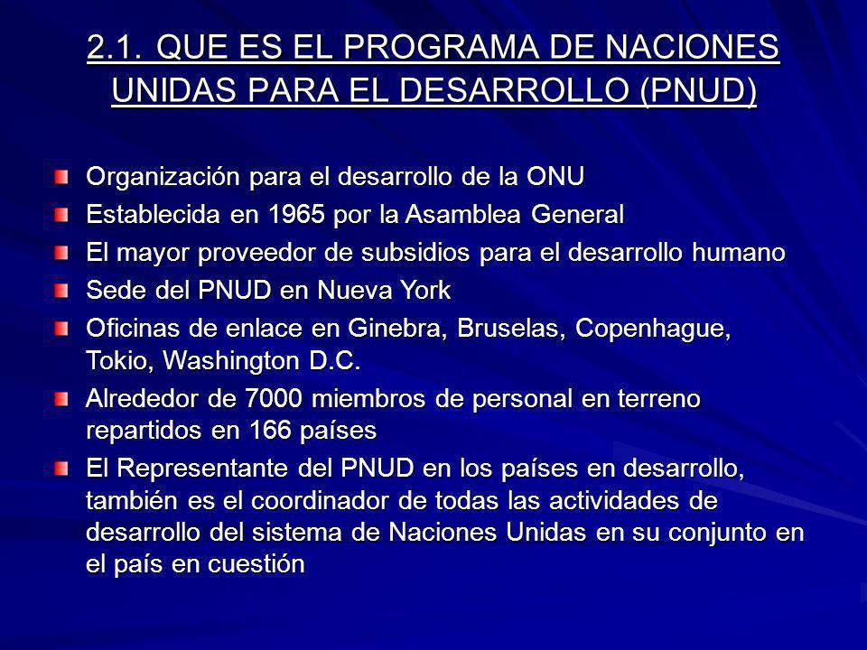 2.1. QUE ES EL PROGRAMA DE NACIONES UNIDAS PARA EL DESARROLLO (PNUD)