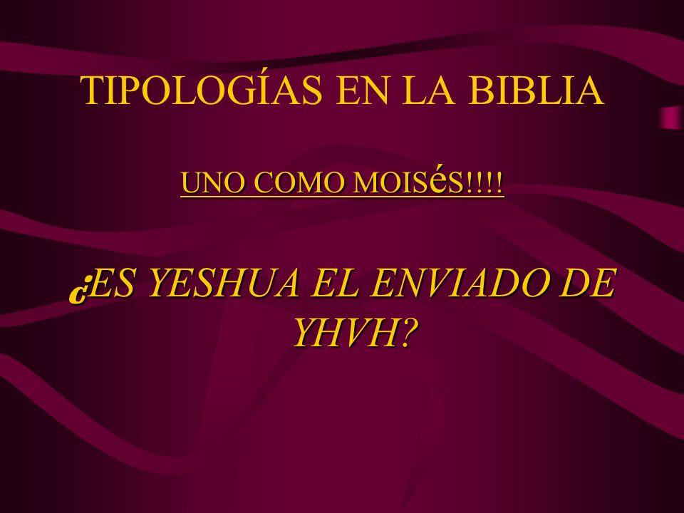 TIPOLOGÍAS EN LA BIBLIA