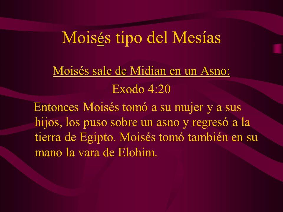 Moisés sale de Midian en un Asno: