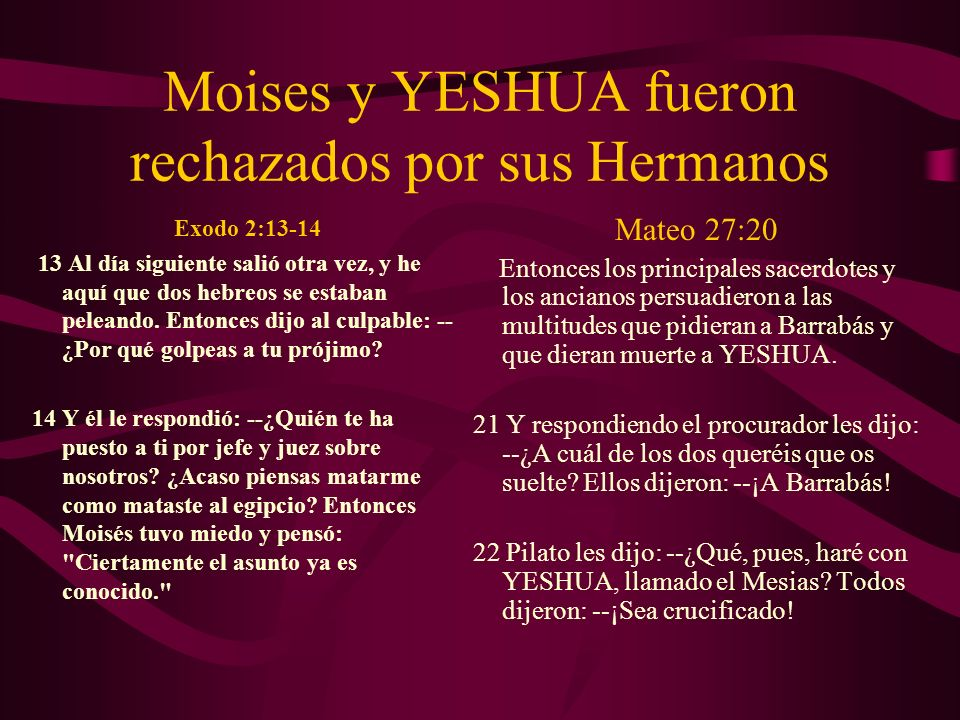 Moises y YESHUA fueron rechazados por sus Hermanos