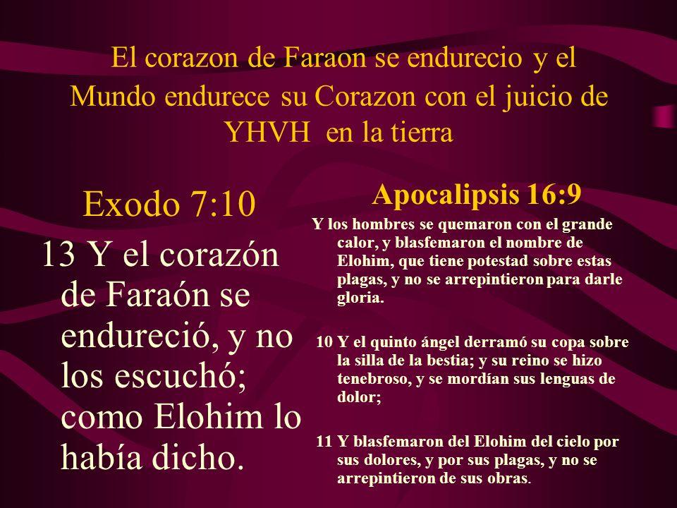 El corazon de Faraon se endurecio y el Mundo endurece su Corazon con el juicio de YHVH en la tierra