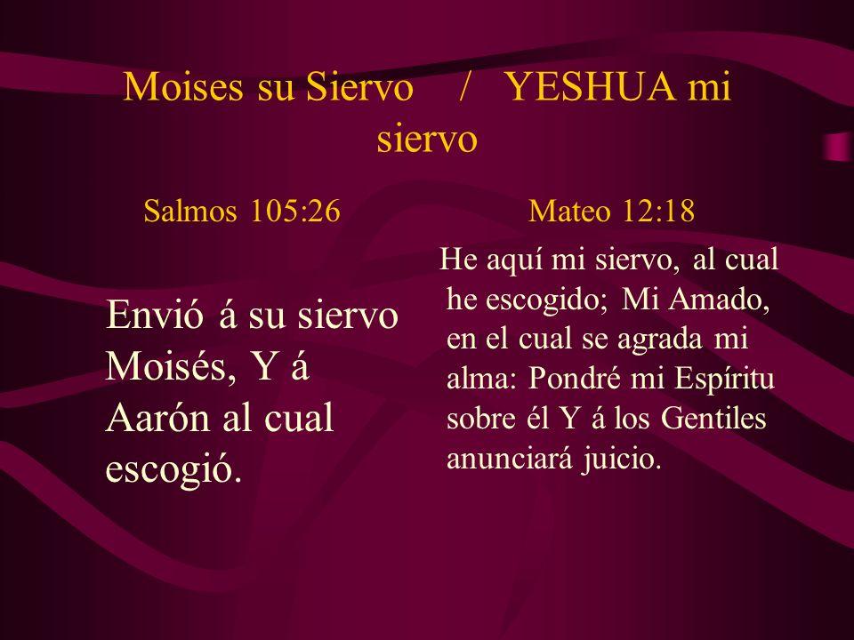 Moises su Siervo / YESHUA mi siervo